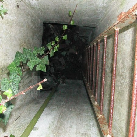 underground bunkers for sale 1 Survive By Finding Underground Bunkers for Sale